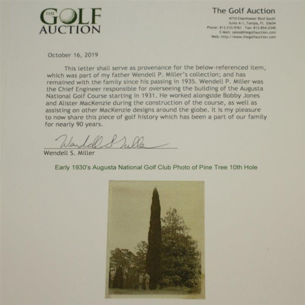 Early 1930's Augusta National Golf Club Type 1 Original Photo of Pine Tree w/ Architects 10th Hole