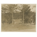 Early 1930s Augusta National Golf Club Original Photo of Tree Clearing on Property